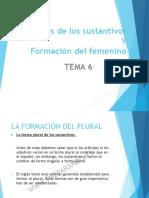 Tema 6 (Plurales y Formación Femenino)