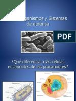 232611069-Microorganismos-y-Sistemas-de-Defensa.pdf