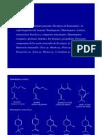 Clase2.pdf