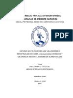 RE_MED.VETE_NATALI.ARCE_ESTUDIO.HISTOLOGICO.DE.LAS.VELLOSIDADES.INTESTINALES_DATOS.PDF