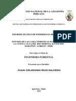 TESIS - ESTUDIO DE LAS CARACTERISTICAS FLORISTICA DE  LA CUENCA ALTA DEL RIO MORONA, DATEM DEL  MARAÑON - LORETO - PERU