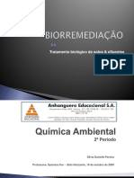 Biorremediação Power Point