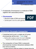 Chapter 6 Dna Structure and Function