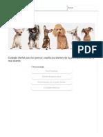 Cuidado Dental Para Los Perros_ Cepilla Los Dientes de Tu Perro Para Eliminar El Mal Aliento _ PERROSPEDIA