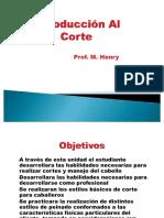 Apuntes IntroduccionCorte PP.pdf