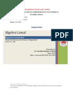Trabajo Grupal Álgebra Lineal
