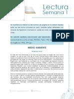 Medio Ambiente_diccionario de desarrollo.pdf