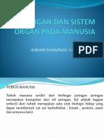 Jaringan Dan Sistem Organ Pada Manusia