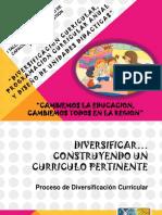 Diversificacion de Educacion Inicial (1)