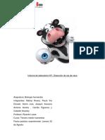 Informe laboratorio ojo de vaca