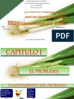 Proyecto Cebollin Eilismar Djfd