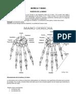 artmuñecaymano.pdf