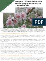 7 Metode Pentru Protejarea Pomilor Fructiferi de Înghețurile Târzii de Primăvară!
