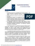 plasticidad_neuronal.pdf