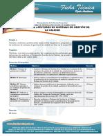 Formación de Auditores en Sistemas de Gestión de La Calidad