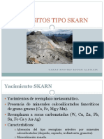 155624778-Depositos-Tipo-Skarn.pdf