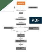 Mapa Conceptual de Maquiladoras