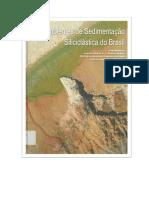 Ambientes de Sedimentação Siliciclástica do Brasil