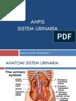 sistem-urinaria.pptx