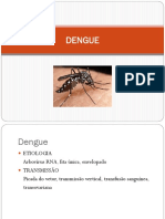 Dengue e Leptospirose Slide