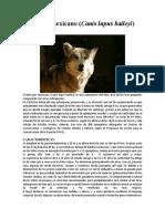 Lobo gris mexicano.docx