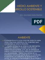 Tema 1 Medio Ambiente y Desarrollo Sostenible