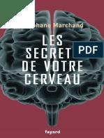 Stephane Marchand - Les Secrets de Votre Cerveau
