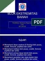 Blok Ekstremitas Bawah Cpd 2008