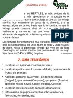 recopilacion de seminario.pptx