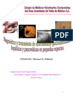 Willard 2007 Gastroenterología