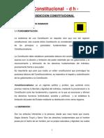 4Jurisdiccion Constitucional (derechos Humanos).pdf
