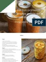 Curso-fermentación-clase-1