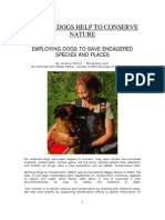 Shelter Dogs Help to Conserve Nature