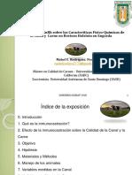 Conferencia Técnica de Rodriguez Poche