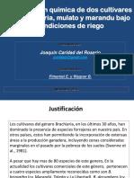Conferencia técnica de Joaquin Caridad