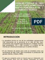 Conferencia técnica de Manuel Atiles Peguero