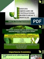 Conferencia técnica de Juan Arias