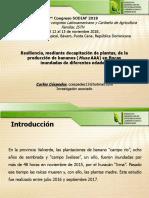 Conferencia técnica de Carlos Cespedes