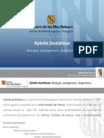 Ponencia Xylella Fastidiosa 2a Parte