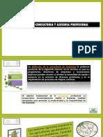Unidad 4 Despacho y Consultoria Profesional