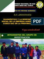 Diagnóstico y La Responsabilidad Social de La Empresa Agrícola ALSUr Cusco SAC en La Provincia de Anta