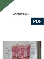 ANATOMI KULIT.pptx