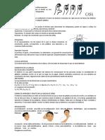 Características de La Lengua de Señas Mexicana