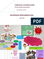 infografia lidis