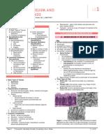 [ANA] 1.02 Epithelium and Glands (IDRivera)