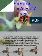 Yamuna Biodiversity Park ppt.