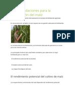 Recomendaciones Para La Fertilización Del Maíz