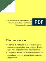 2.-Vias Metabolicas Carbohidratos-Lípidos y Proteínas-Enzimas