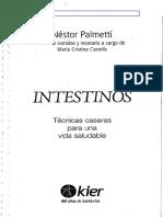 Intestinos Nestor Palmetti