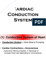ANAT Unit 3 Cardiac Conduction System Notes